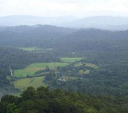 Kashmir Of South India / Scotland Of India - Coorg