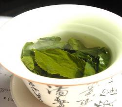 Green Tea- For a Healthy and Green Lifestyle