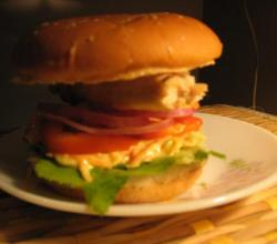 Low calorie Burger-try it