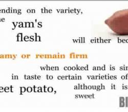 Buying and Cooking Yams
