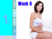 Pregnancy - First Trimester: Week 6