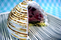 How To Make Strawberry Ice Cream And Baked Alaska - The Aubergine Chef