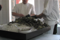 Hog Island Oysters At New Zealand Wine Show Review Video