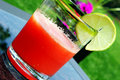 How To Make Watermelon Fresca1