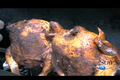 How To Make Grilled Beer Marinated Chicken