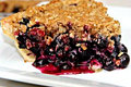How To Make Fresh Blueberry Crumb Pie