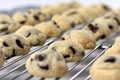 How To Make Chocolate Chip Cheesecake Cookie Bites