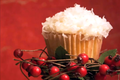 How To Make Coconut Snowball Cupcakes: Cupcake Show #14
