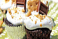 S'more Cupcakes & Marshmallow Frosting