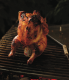 Beer Can Chicken with Sweet and Spicy Pickled Vidalia Onions