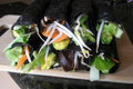 How To Make Fast And Easy Raw Nori Rolls