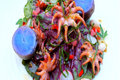 Grilled Baby Octopus with Spring Salad