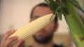 Tips To Microwave Corn On The Cob Video
