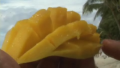 Tips To Cut A Mango