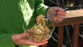 How To Dress Ramen Noodles With Peanut Butter Video