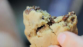 Gluten-free Chocolate Chip Cookies Recipe Video