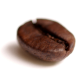 Coffee Bean Transparent