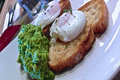 Poached Eggs Flamande