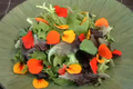 Pretty Nasturtium Salad