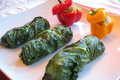 Raw Chard Dolmas