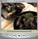 Belgian Mussels Video