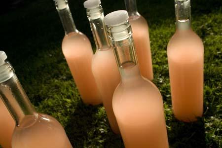 Вино из сливы в домашних условиях рецепт без дрожжей