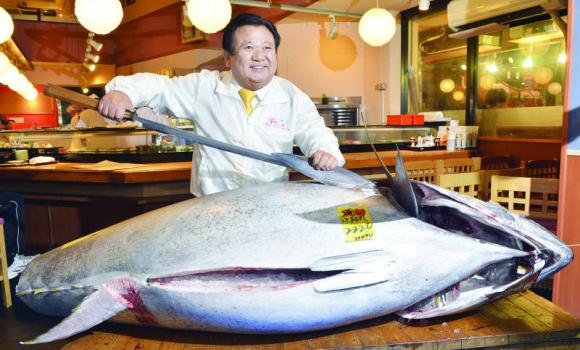Bluefin tuna record price