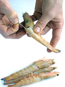 Cleaning shrimps thoroughly when learning how do you grill shrimps