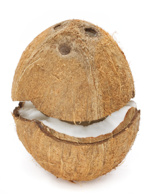 Cracking open a coconut is quite an easy task