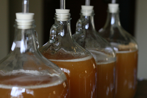 Homemade Hard Apple Cider stored in simple Glass jars