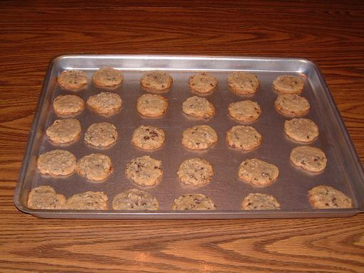 Cookies neatly arranged in a cookie sheet for baking