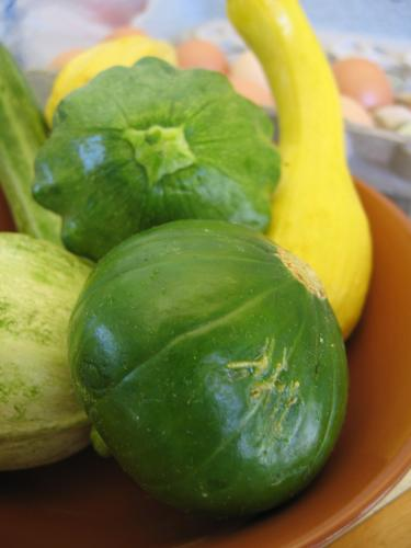 Tips on how to freeze summer squash and use it later.