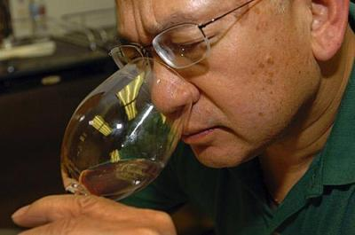 Tips on how to fake being a wine expert