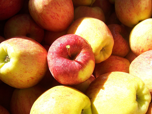 apples for youth, health and long life