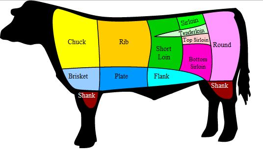 Diagram indicating the various primal cuts of beef