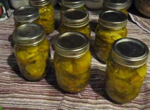 bread n butter pickle