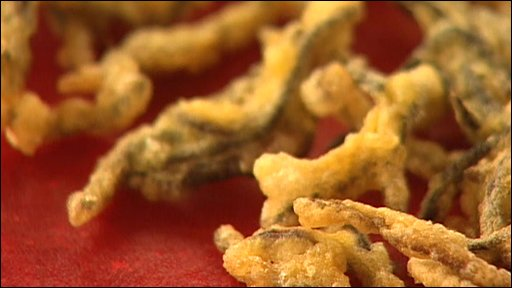 Deep fried earthworms
