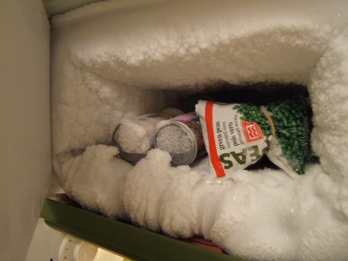 Regularly melt the ice from your freezer and do not allow it to thicken like this.