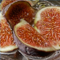 drying-figs