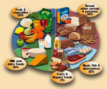 Copy of 5 Nutrition Food Groups by William Brightman on Prezi