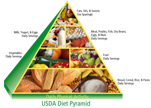 Food Pyramid For A Healthy Life