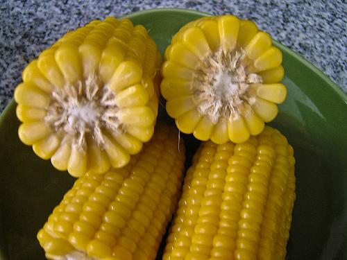 Freezing Mashed Corn