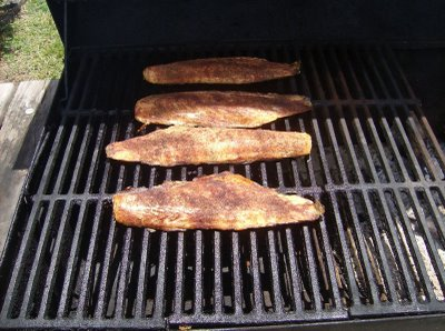 Prefer a fish with high fat content for smoking