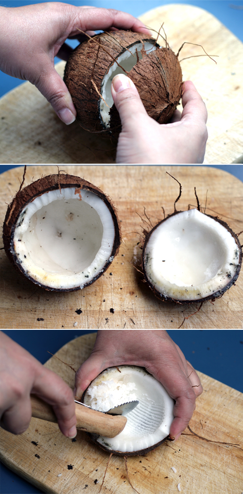 how to shred coconut