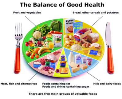 Nutrition: Food Pyramid and Food Groups | Publish with Glogster!