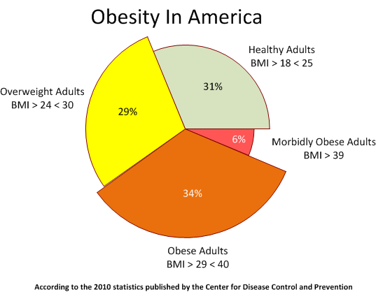 fast food and obesity in america The united states has the largest fast food industry in the world,  worries of an  obesity epidemic and its related illnesses have.