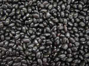 Black beans have immense health benefits