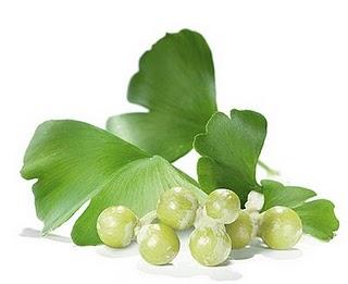 adhd herbal remedies