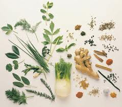 herbal remedies for cholesterol