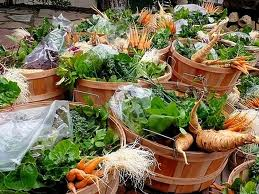 Organic Food -- Locally Grown Organic Food